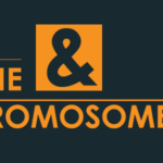 Gene and Chromosome