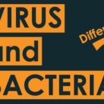 virus vs bacteria