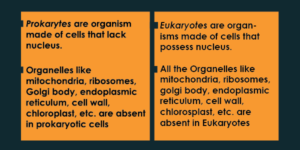 Difference between Prokaryotes and Eukaryotes