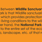 difference between wildlife sanctuary and zoo
