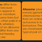 difference-between-autosomes-and-sex-chromosomes