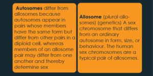 Difference Between Autosome and Sex Chromosome