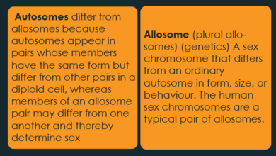 similarities between sex chromosomes and autosomes in Hialeah