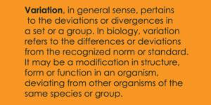 variation-definition-biology