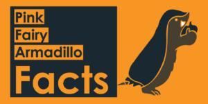 pink fairy armadillo facts