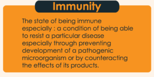 Difference-Between-Humoral-and-Cell-Mediated-Immunity