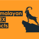 himalayan ibex facts-