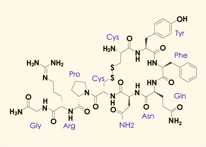 Anti-diuretic-hormone