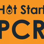 hot start pcr